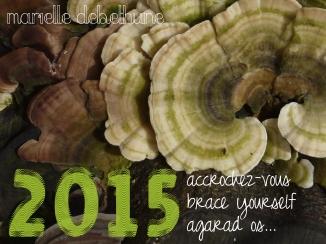 voeux 2015 marielle debethune
